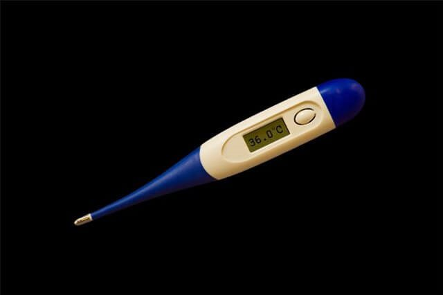 Digital Thermometer with Flexible Tip